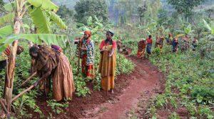 Het waterproject: De vrouwen uit Mbuye slaan de handen ineen