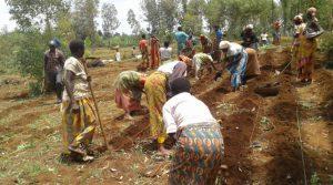 Alles in Mbuye is in gereedheid gebracht voor het vrouwenproject. Nu bidden om regen